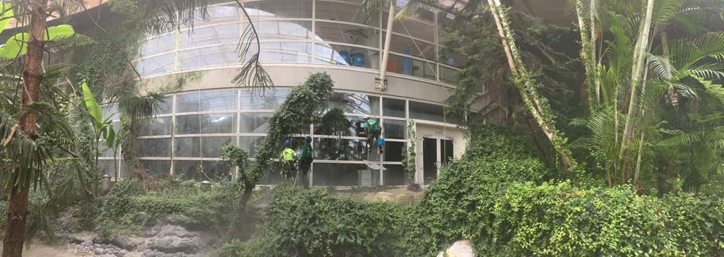 Parco Oltremare - pulizia vetrata_9